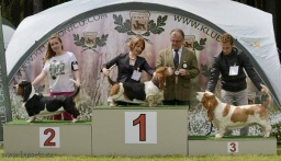Perla Lady Barnett´s - Winner class - excellent 3